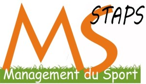 MS Logo Top